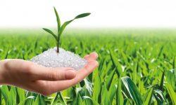 Các sản phẩm phân hủy sinh học có thực sự hữu ích?