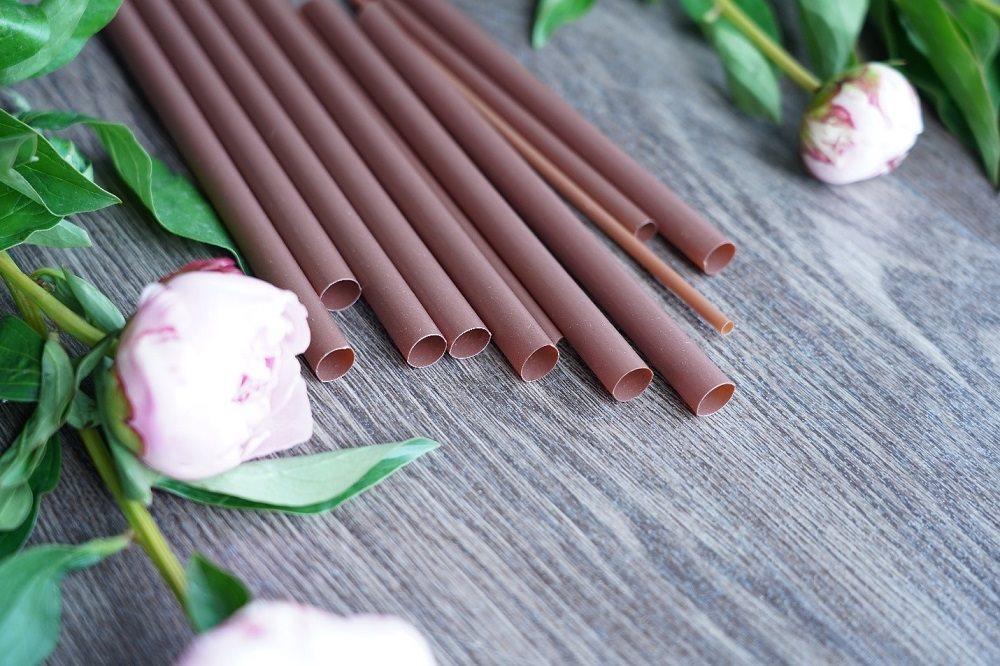 Sản phẩm ống hút bột gỗ AnEco của An Phát Holdings làm từ nguyên liệu sinh học phân hủy hoàn toàn.